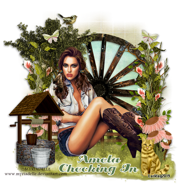 CHECKING IN - Page 3 SimlecowgirlAmela-vi_zpssfqeef2d