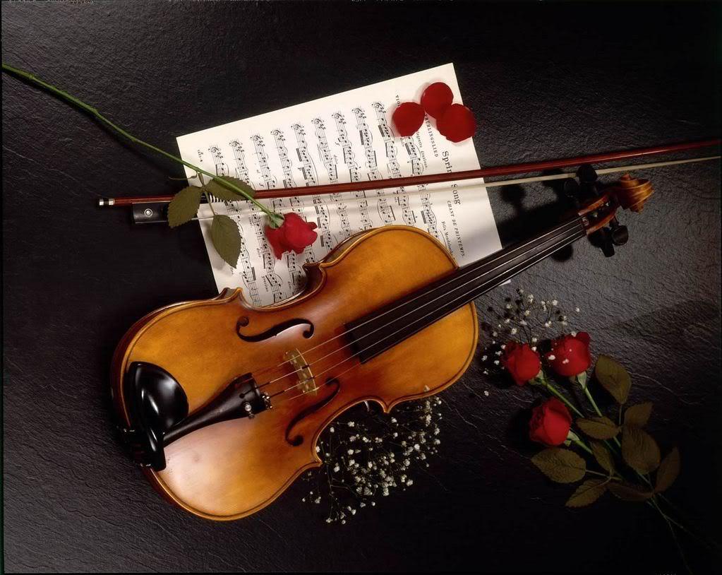 BUON  LUGLIO - Pagina 2 Violino-1