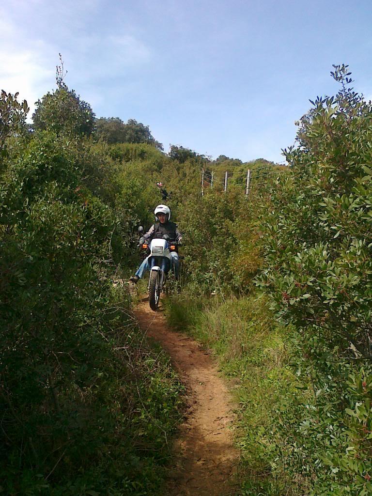 El Bosque con roadbook 090320141937_zps075bb8c8