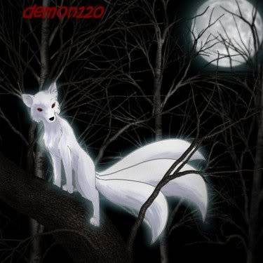 Shimo Da Foxeh White_Fox_101