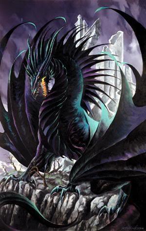 Tyson Nightage Dragon_black