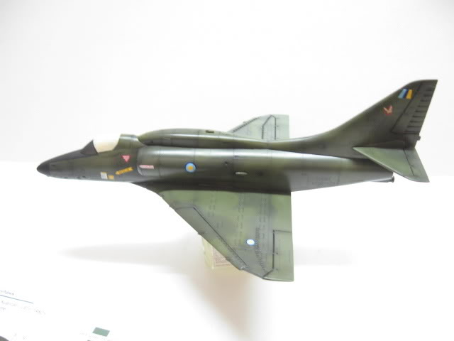 A-4PTM 1/48........PTM(Pakai Tangkap Muat)....kekekeke.....yg ni saya tunjuk sikit mcmane nakairbrush camou IMG_1537