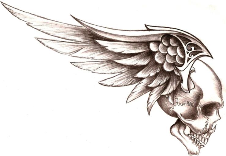 Ficha de Hayato Gokudera Skull_wings_by_50lbhead_zpsgtsnrntz