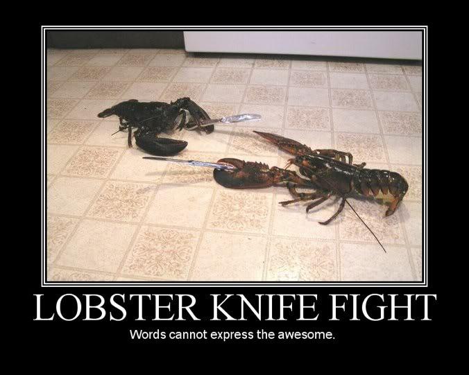 Le Blue Lobsters Chatroom~ - Page 6 Lobsterknifefight