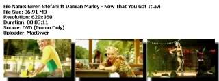 Colección de Videos de Gwen Stefanni [DVDRIP] [FS] Nowthat