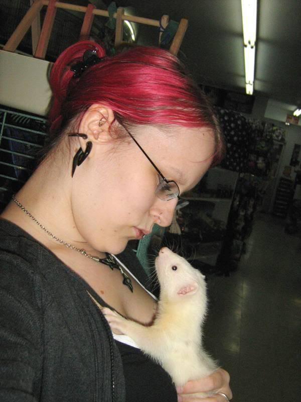 Visite à l'animalerie FuretmlelanimaleriedAmqui2