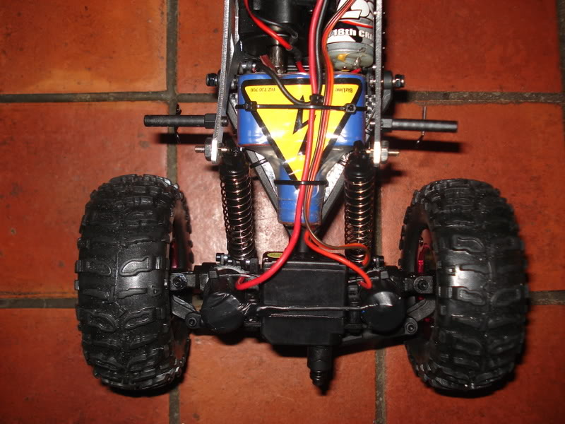 Mini Rock Crawler LOSI DSC00305