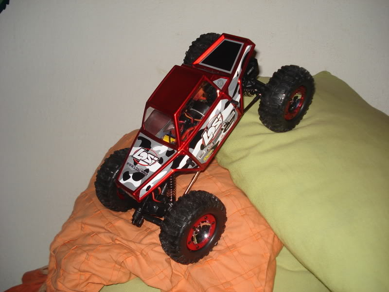 Mini Rock Crawler LOSI DSC00315
