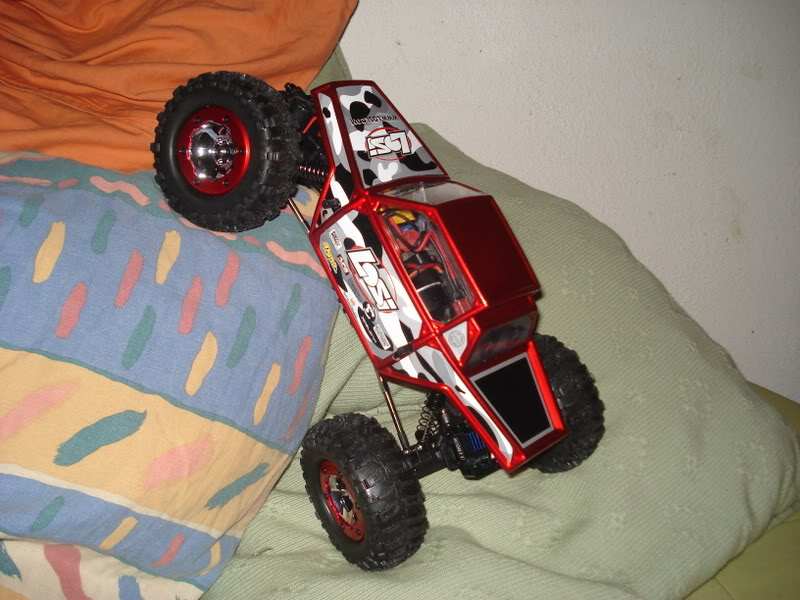 Mini Rock Crawler LOSI DSC00316