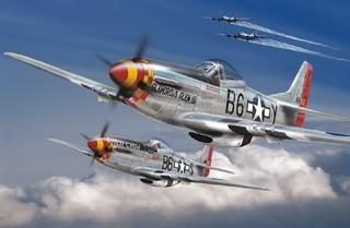 Roaring Aces FSX Flight group