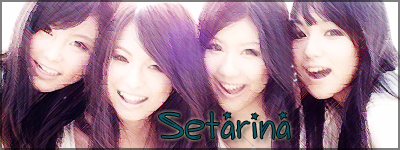 Need a Signature? Setarina