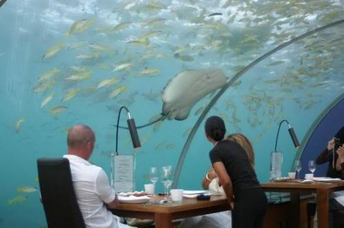 مطعم محمول تحت الماء Atts7ld31