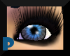 *Psi Designs** Blueblk100
