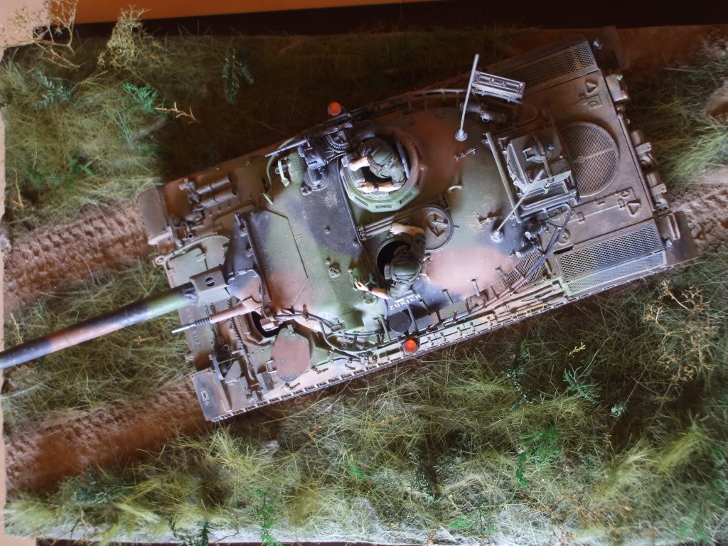 Le Zurich du zuzu : AMX 30 B 1/35 - Page 7 DSCF6072