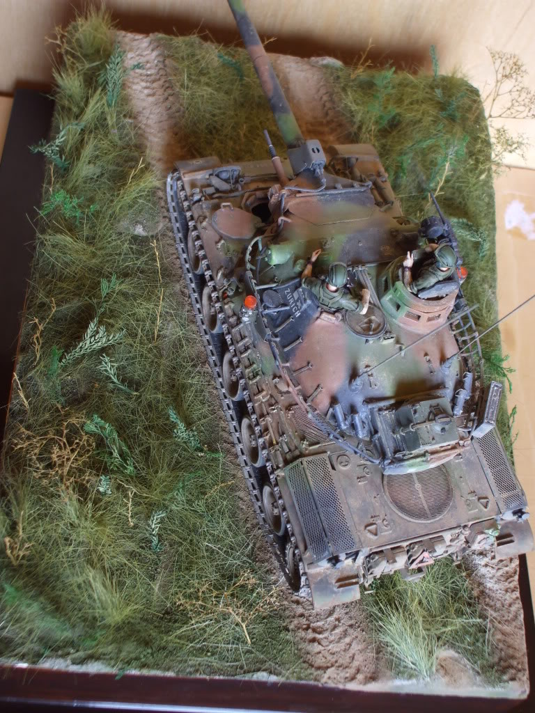 Le Zurich du zuzu : AMX 30 B 1/35 - Page 7 DSCF6078