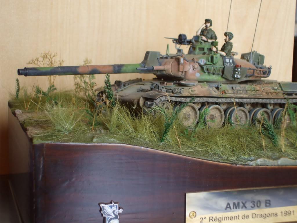 Le Zurich du zuzu : AMX 30 B 1/35 - Page 7 DSCF6079