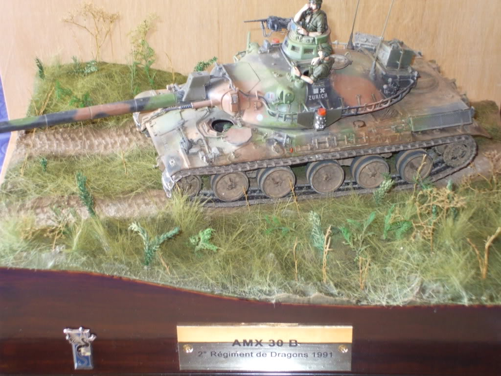 Le Zurich du zuzu : AMX 30 B 1/35 - Page 7 DSCF6084