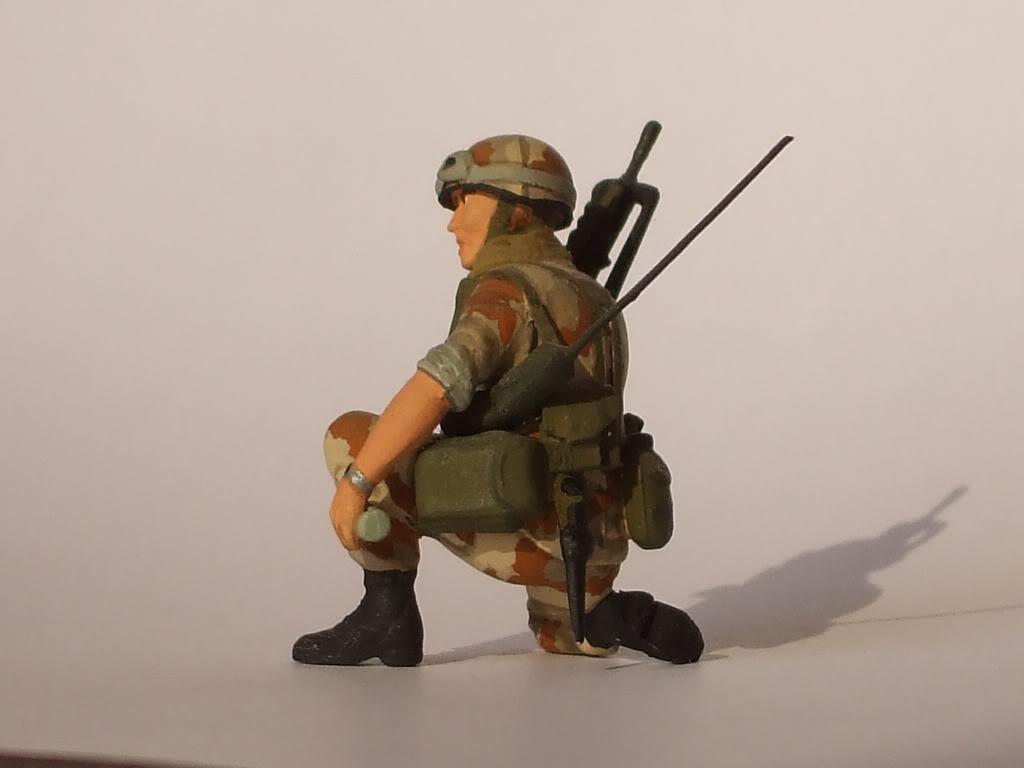 1/35 Heller Armée française Guerre Froide DSCF6105