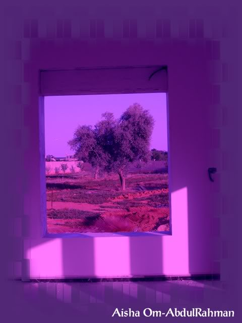 Libya - It's nature & culture - Page 2 DSC00122a