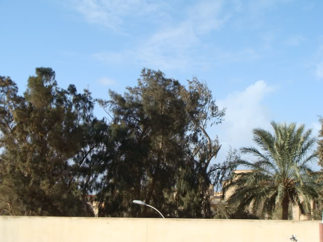 Libya - It's nature & culture DSC00593