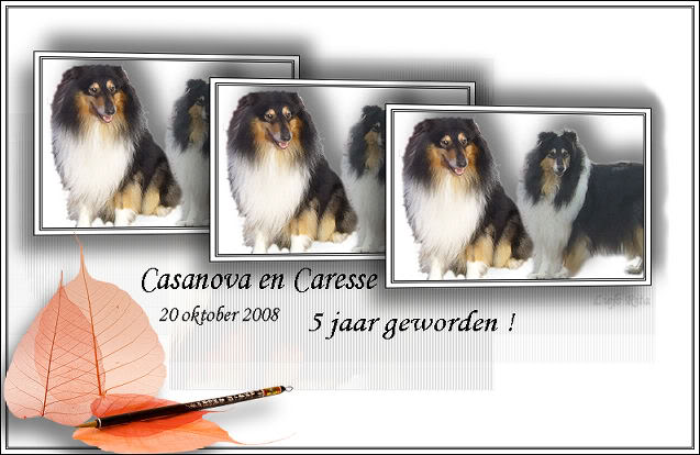 Bon anniversaire Cyrano, Charming, Caresse, Casanova.... Casanovaencaresse5jaar