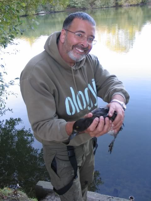 Best baits no longer used.... Picture567