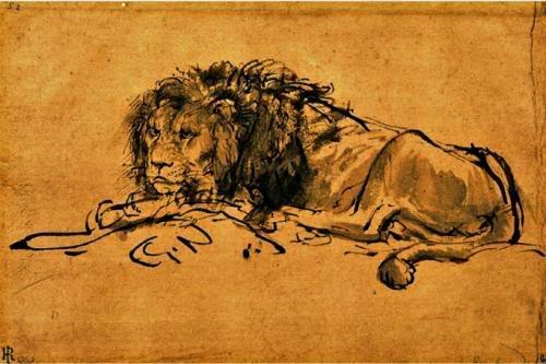 შოთა რუსთაველი Rembrandt-A-Lion-Lying-Down-207063
