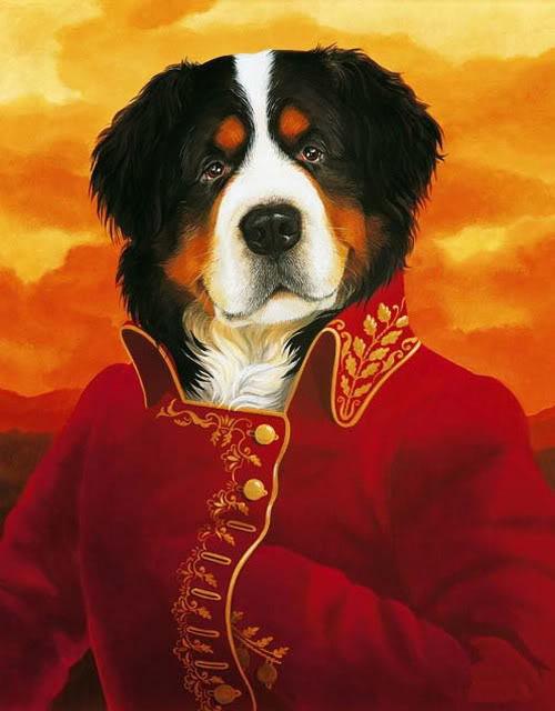 გოდერძი ჩოხელი Dog_aristacrat-2