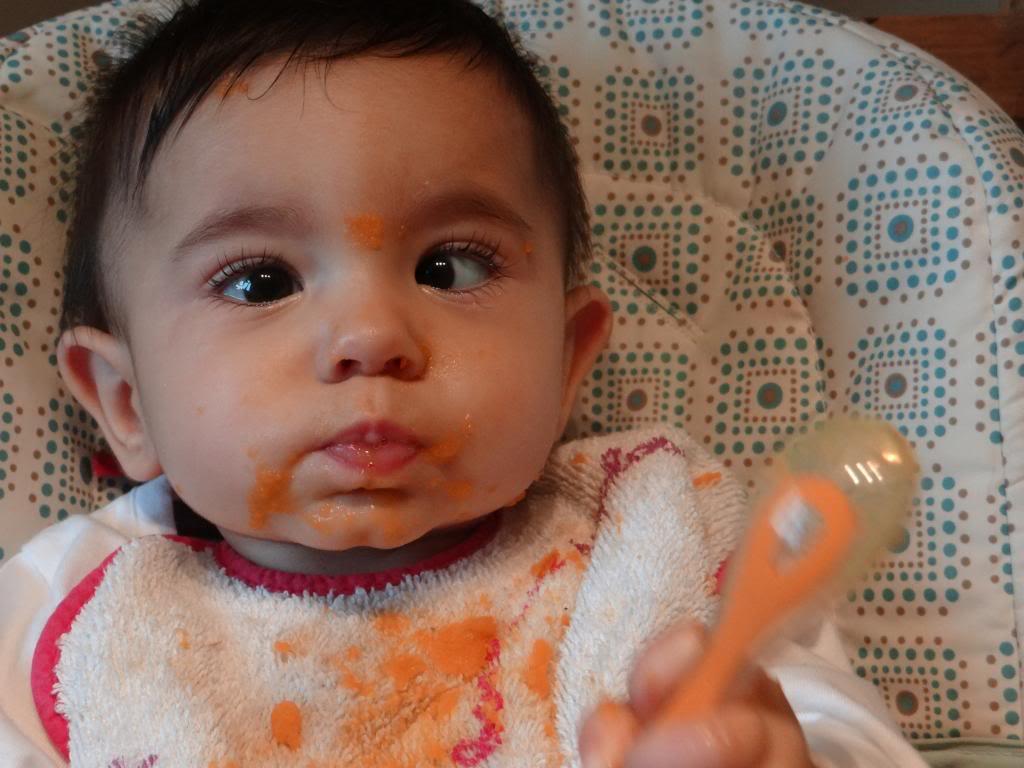 Pour les mamans des crevettes nées en mai - Page 2 DSC01552