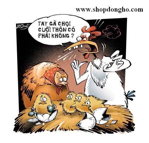chien zui tong hop 27