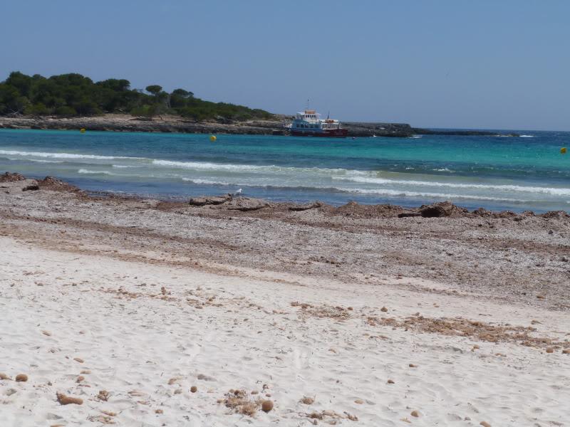 Balearic Islands, Cala'n Bosch. Marinda Garden. Menorca P1000258