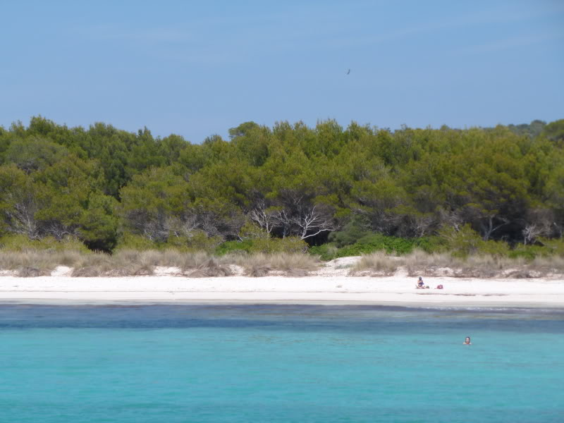 Balearic Islands, Cala'n Bosch. Marinda Garden. Menorca P1000261