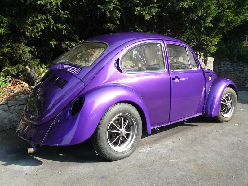 My first beetle Stella... P1020475