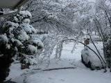 Pics of Snow Th_IMG_1121