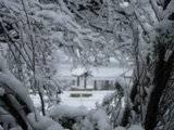 Pics of Snow Th_IMG_1123