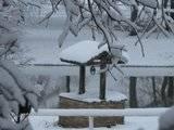 Pics of Snow Th_IMG_1124