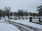 Pics of Snow Th_IMG_1127