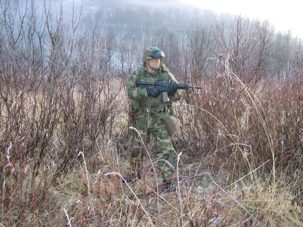 living history-us army and usmc from nam to 1990s Usmcbarfrost