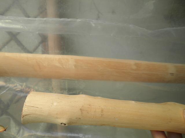 Debate sobre Ahumar, Fumigar o Fumear la madera. P1270263
