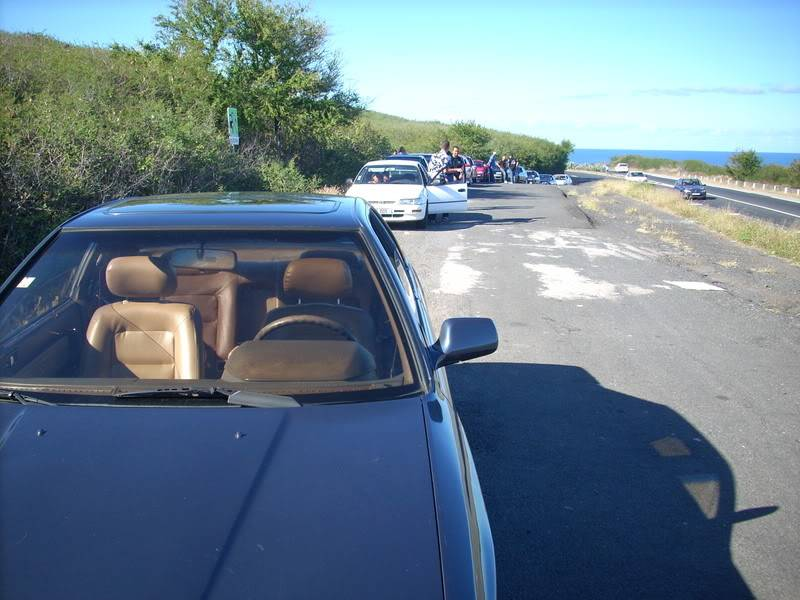 Nos rassemblements : Réunion Island 0607083