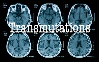 Transmutations Transadvert_zpsbdbb7686