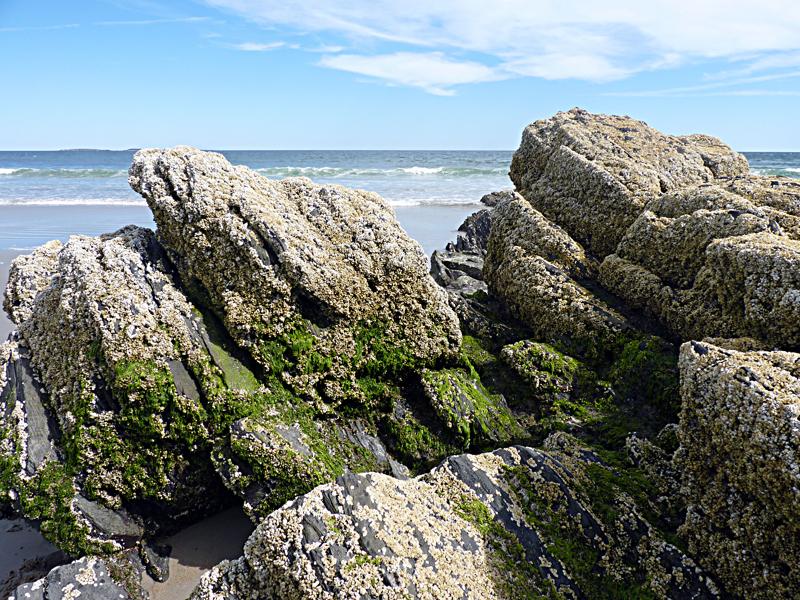 Le Maine...là où vit Stephen King. Juilletaoutseptembre2012450