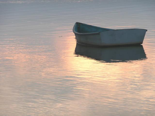 Le Maine...là où vit Stephen King. Sept08Oldorchard163-2