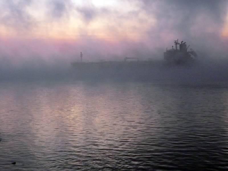 Ma thérapie...le fleuve dans tous ses états. Septembre2009206