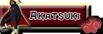 Lider Akatsuki