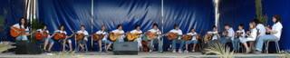Grupo de Viola ( Lagartos & Companhia )