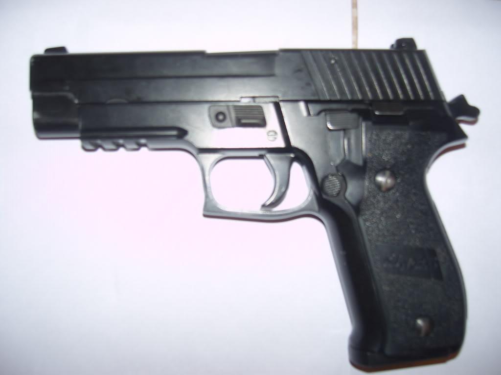 Pistols/Side Arms Sig