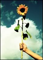 ggetu avatarid, UUED 19.08.09 A_gift_for_the_sun__by_m0thyyku