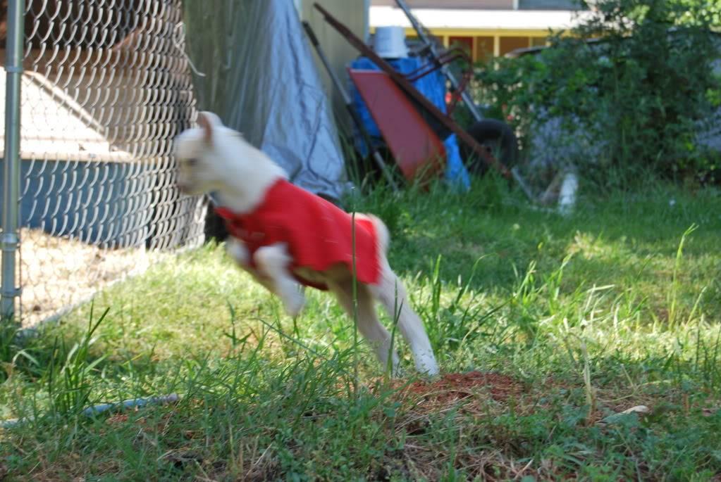 Warning! cuteness overload! 20120413_6