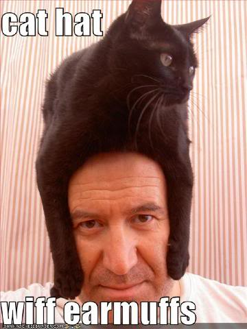 Once Upon A Time In The Chat Box... Cat-hat-head